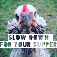 #SlowtheForkDown: top advice from a (former) top chef, whose now happier mucking about in the dirt