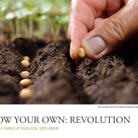Grow Your Own: Revolution