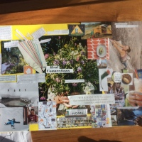 Picture this: vision boards as a way to cut and paste your way to a clearer sense of your deep desires
