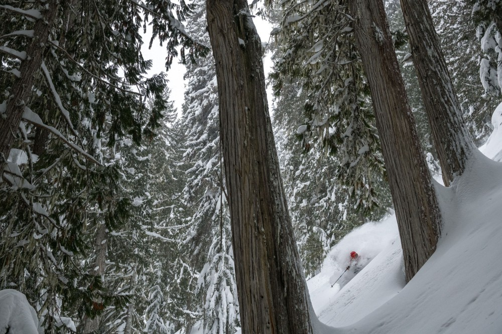 Photographs from around the Monashees and Incomappleux with Leah Evans