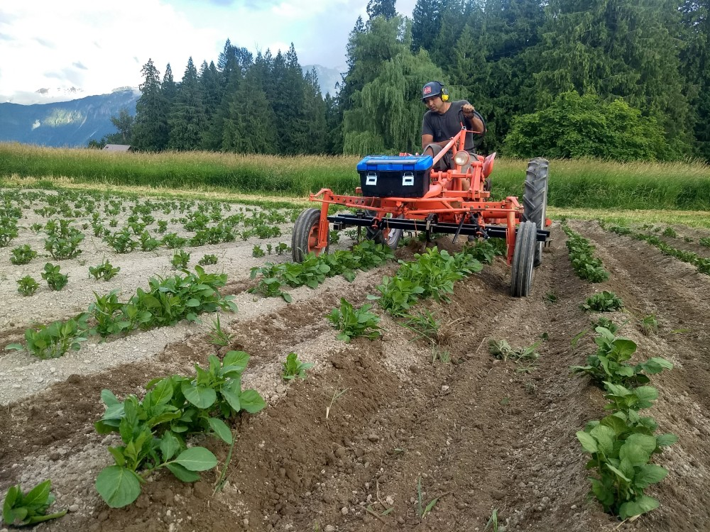Farmer Andrew Budgell working on an early draft Laughing Crow Organics